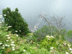 Loch_Ness_Near_Drumnadrochit
